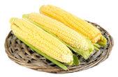Verduras frescas de maíz aislado en blanco — Foto de Stock