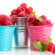 Beautiful raspberries in buckets isolated on white — Stock Photo #28236161