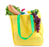 Eco bag with shopping isolated on white — 图库照片