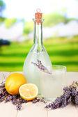 Lavender lemonade in bottle, on bright background — Stock Photo