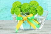 Beautiful green chrysanthemum in bowl on table on blue background — Stock Photo
