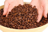 Coffee beans in hands close-up — Stock Photo