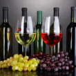 Assortment of wine in glasses and bottles on grey background — Stock Photo #28303215