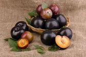 Rip plums on basket on sacking — Stock Photo