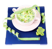 Cabbage soup in plate in balance isolated on white — Stock Photo