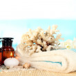 Stock Photo: Sea spa elements close up