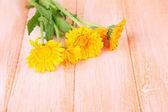 Calendula flowers on wooden background — Stock Photo