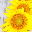 Stock Photo: Sunflowers on wooden background