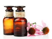 Medicine bottles with purple echinacea, isolated on white — Stock Photo