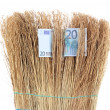 Broom sweep euro close-up — Stock Photo #28604741