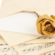 Old envelope with blank paper with dried rose on music sheets close up — Stock Photo #28604831