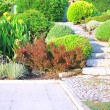 Foto de Stock  : Landscaping in garden