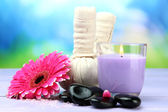 Kaplıca tedavisi, spa taşlar, gerbera ve mum için bitkisel kompres topları — Stok fotoğraf