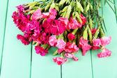 Bouquet d'oeillets, sur fond de bois de couleur — Photo