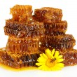 Sweet honeycomb with honey, bee on flower, isolated on white — Stock Photo #28647277