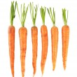 Stock Photo: Carrots, isolated on white