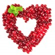 Ripe red cranberries, isolated on whit — Stock Photo #28649545