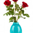 Beautiful roses in vase, isolated on white — Stock Photo