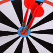 Target with darts close-up — Stock Photo