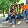 Happy group of young students sitting in park — Stock Photo #28652277