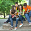 Stock Photo: Happy group of young students sitting in park