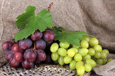 Ripe delicious grapes on table close-up — Stock Photo