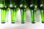 Bottles of beer, close up — Stock Photo