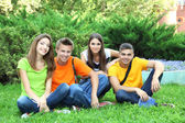 Happy group of young beautiful people sitting on meadow — Stock Photo