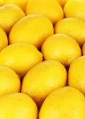 Close-up de limões maduros — Fotografia Stock
