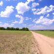 Beautiful field — Stock Photo #28768317