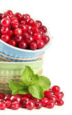 Ripe red cranberries in bowls, isolated on whit — Stock Photo