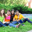 Happy group of young students sitting on  meadow — Stock Photo