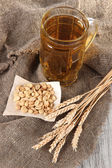 Beer in glass and nuts on bagging on wooden table — Stock Photo