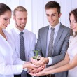 Business team holding together fresh green sprout — Stock Photo