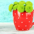 Beautiful green chrysanthemum in cup on table on blue background — Stock Photo