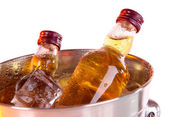 Minibar bottles in bucket with ice cubes, isolated on white — Stock Photo