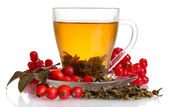 Green tea with red viburnum and hips in glass cup isolated on white — Stock Photo