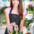 Beautiful girl florist with flowers in flowers shop — Stock Photo #28898965