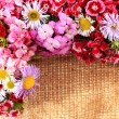 Wildflowers on burlap background — Stock Photo
