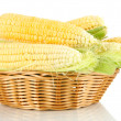 Stock Photo: Fresh corn vegetable in basket isolated on white