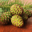 Green cones and fir tree on wooden background — Stock Photo