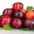 Stock Photo: Ripe plums isolated on white