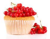 Smaczne muffin z jagód na białym tle — Zdjęcie stockowe