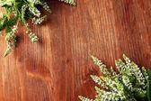 木制背景上新鲜薄荷花 — 图库照片