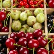 Stock Photo: Different summer berries in wooden crate, close up