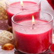 Beautiful red candles with flower petals in water — Stock Photo #29094481