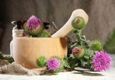 Medicine bottles and mortar with thistle flowers — Stock Photo