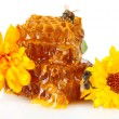 Stock Photo: Sweet honeycomb with honey, bee and flowers, isolated on white