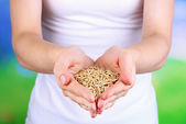 Wheat grain in female hands on natural background — Stock Photo
