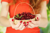 Woman hands holding basket of ripe red cranberries, close u — Stock Photo